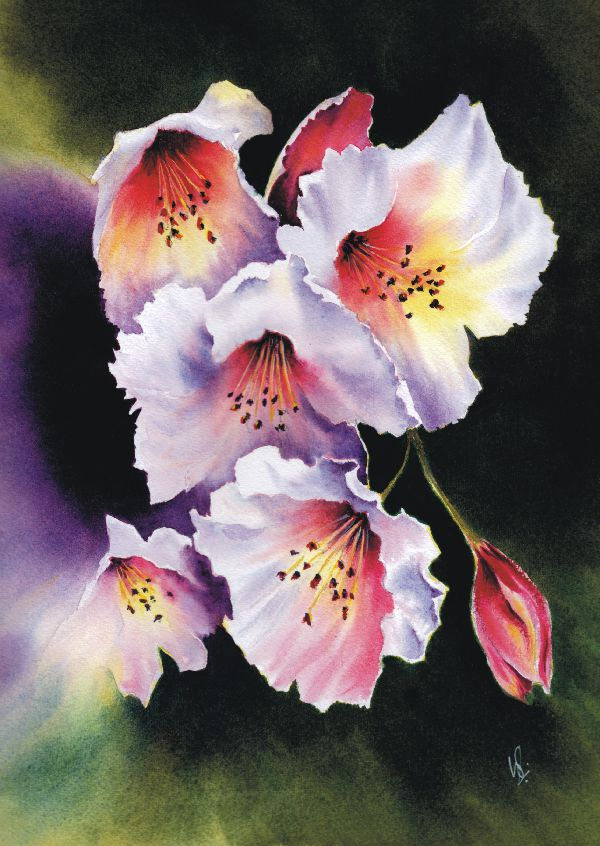 Watercolour Magic - Class Examples